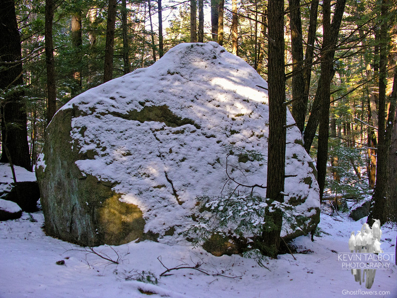 In the Boulder Field 1.