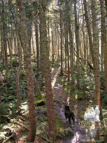Emma on Howker Ridge Trail.