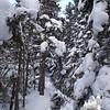 A little more snow as we ascend...
