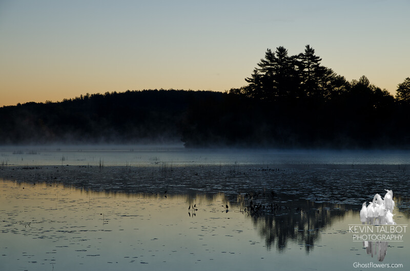 Just before sunrise on the Powow...