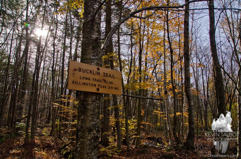 The Bucklin Trail.