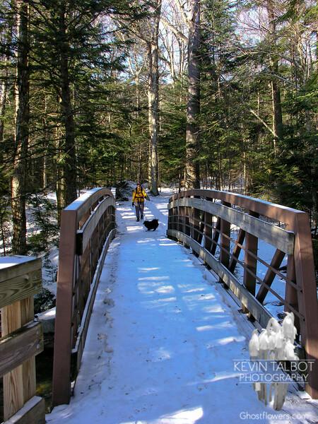 Bridge across the Pemigewasset River at The Basin.