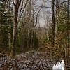 Unknown Pond Trail.