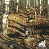 Glencliff Trail.