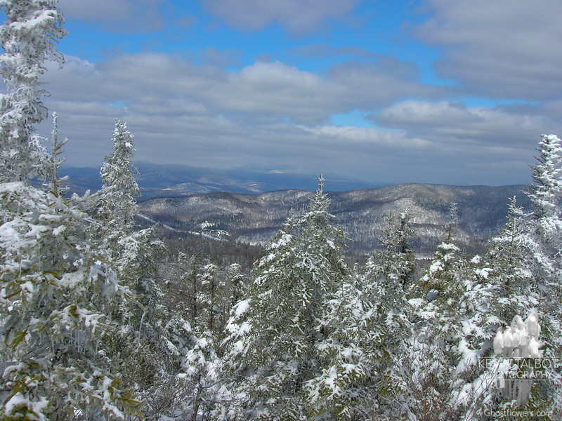 View northwest from Mount Percival.