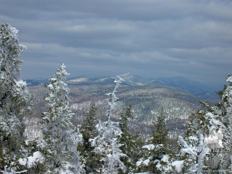 View towards Mount Israel.