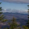 Baldies & Spruce cones