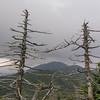View back over Nancy Hanks Peak and Cutts Peak to Mount Ellen.
