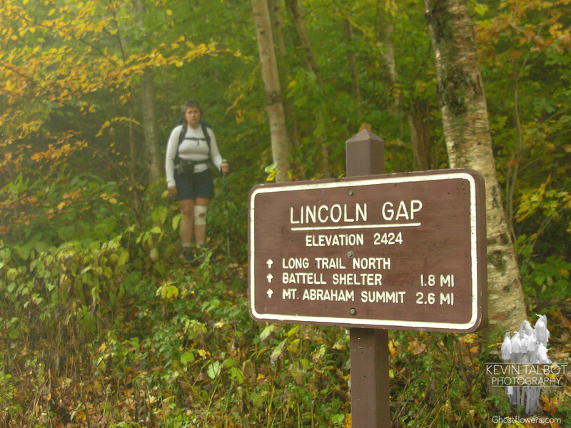 Hiking: Lincoln Gap over Mount Abraham to Mount Ellen out and back. Starting out on the Long Trail in Lincoln Gap.