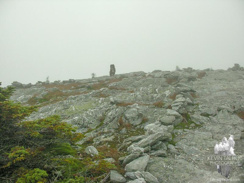 Emma summits Mount Abraham.