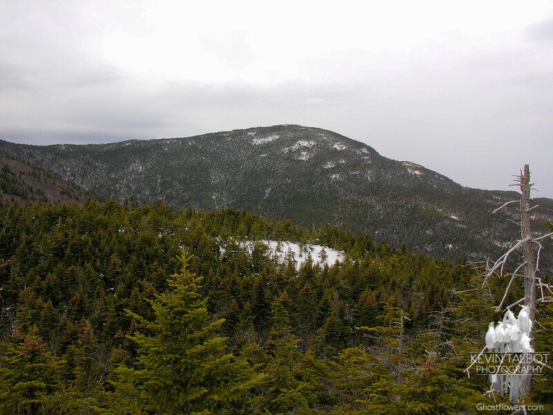 View to Mount Tom from Mount Avalon.