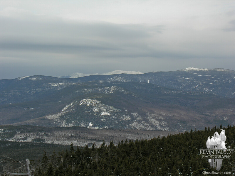 Franconia Ridge as seen from Mount Field. Zeacliff is in the center of the picture.