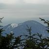 Mount Carrigain as seen from Mount Field.