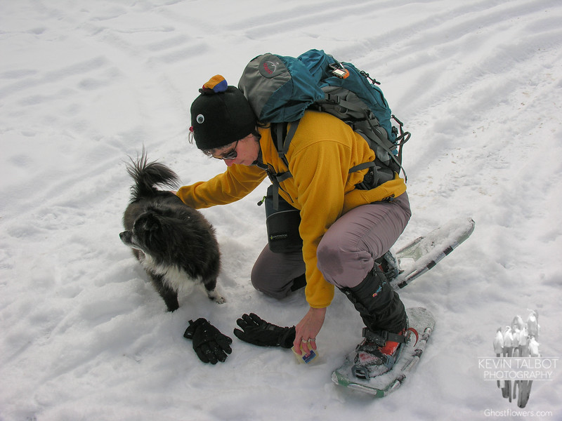 Waxing Emma's paws at the trailhead for winter protection.
