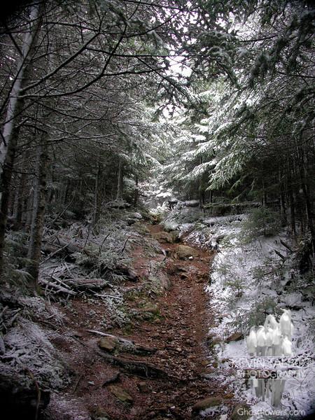 Along the Davis Path.