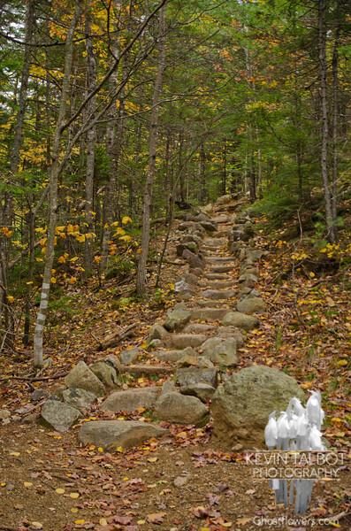 Stairs along Davis Path 2.