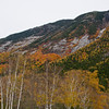 Color in Crawford Notch.