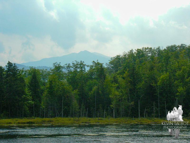 Across Mascot Pond to Mount Madison.