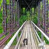 Footbridge under the railroad trestle.
