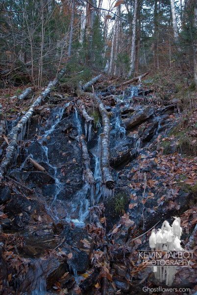 Icy feeder brook.