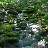 Skookumchuck Brook 2.
