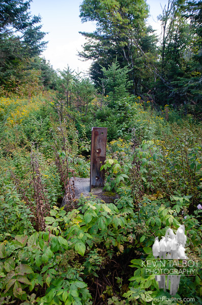 Concrete and steel pilings of the former fire tower...