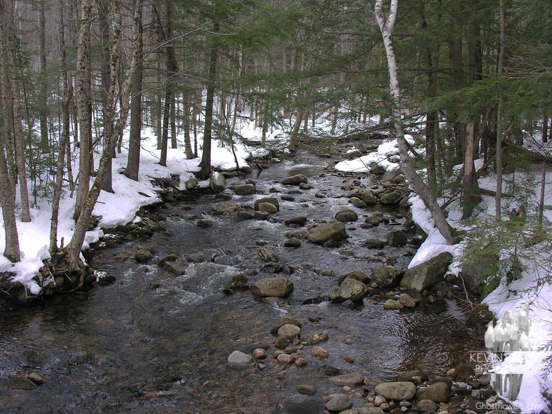 Stony Brook is wide open.