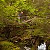 Linda and Blue cross the little bridge on the Stony Brook Trail.