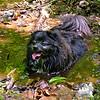 """Mud is soooo refreshing on hot June days!"""