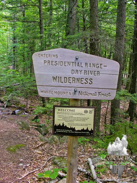 Dry River Wilderness.