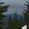 Filtered summit view towards Mount Washington.