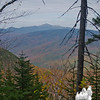 View of Mount Washington along the trail as we descend...