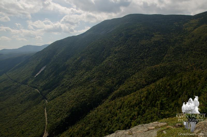 Mount Willey from Mount Willard.