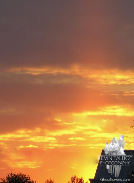 Sunrise and sun pillar at 7am in Kingston.