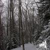 Lonesome Lake Trail 1.