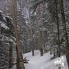 Lonesome Lake Trail 2.