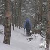 Snowing again as we head down.