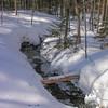 Deep snow around the feeder brooks.