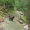 Emma leads the way on the Mount Osceola Trail.