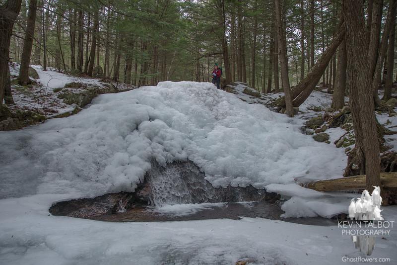 Frozen falls on Fields Brook...