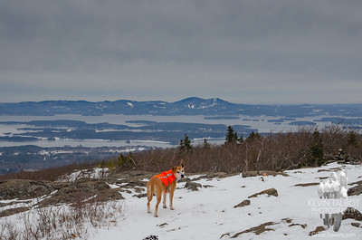 """Riley points at Mount Belknap & Gunstock Mountain and says, """"I've been there!"""""""
