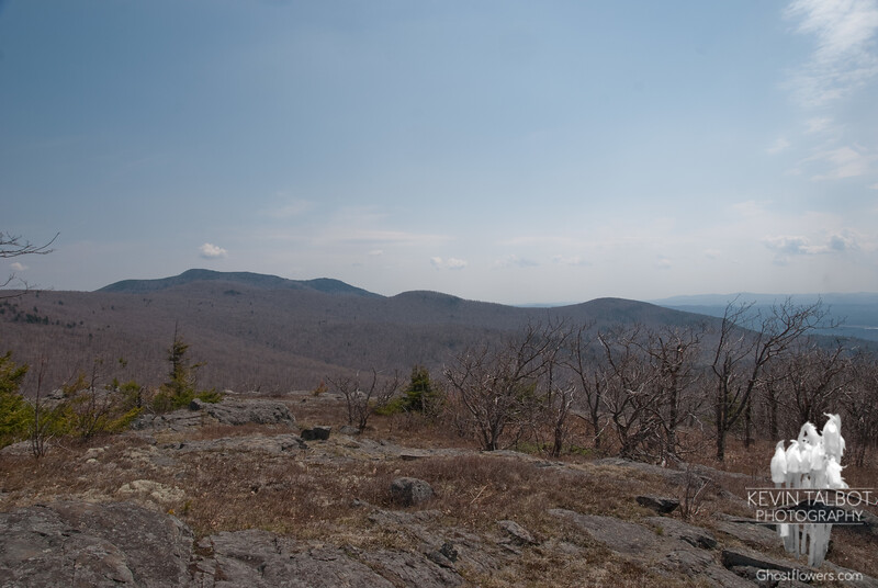 South to Mount Shaw, Black Snout and Turtleback Mountain.