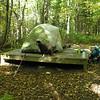 Emma guards the campsite.