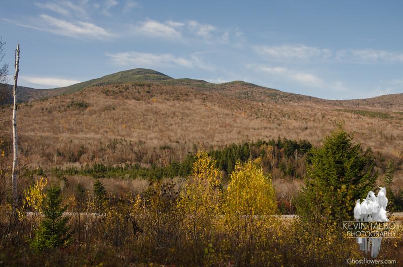 Mount Tom.