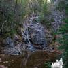 Gibbs Falls