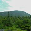 Hazy summit of Shelburne Moriah.