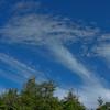 Sky by JT.