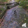 Emma checks out the slabs beside the trail.