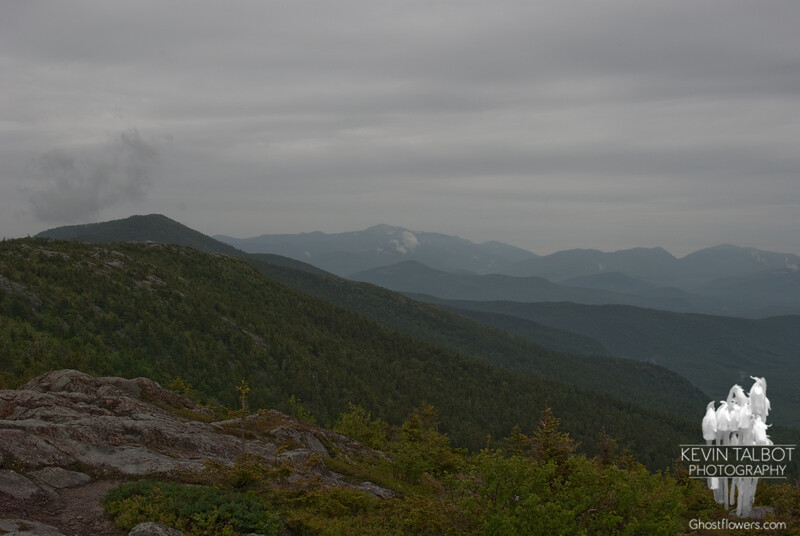 View north L to R  North Moat, Eisenhower, Franklin, Monroe, Washington, Madison, Wildcats, Carter Notch and Carter Dome.