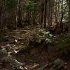 Spruce Hill Trail.
